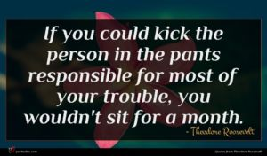 Theodore Roosevelt quote : If you could kick ...