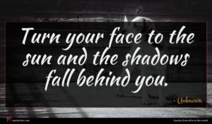 Unknown quote : Turn your face to ...