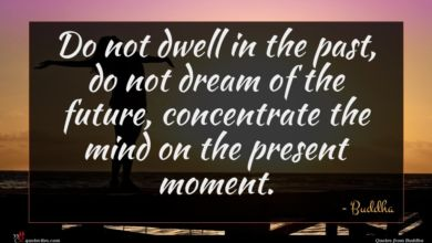 Photo of Buddha quote : Do not dwell in …