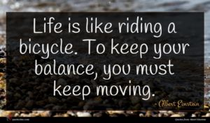 Albert Einstein quote : Life is like riding ...