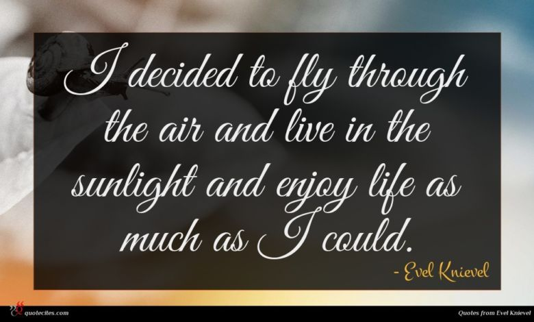 I decided to fly through the air and live in the sunlight and enjoy life as much as I could.
