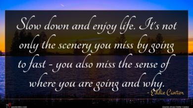 Photo of Eddie Cantor quote : Slow down and enjoy …