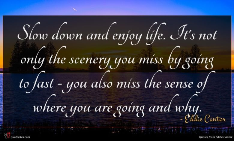 Slow down and enjoy life. It's not only the scenery you miss by going to fast - you also miss the sense of where you are going and why.