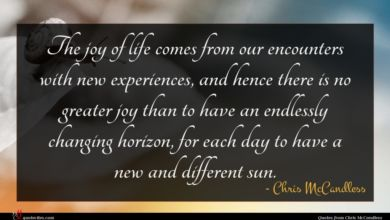 Photo of Chris McCandless quote : The joy of life …