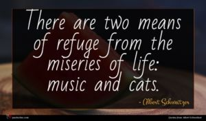 Albert Schweitzer quote : There are two means ...