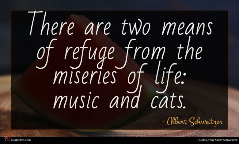 There are two means of refuge from the miseries of life: music and cats.