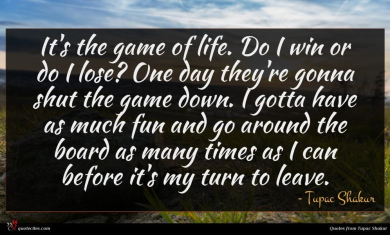 It's the game of life. Do I win or do I lose? One day they're gonna shut the game down. I gotta have as much fun and go around the board as many times as I can before it's my turn to leave.