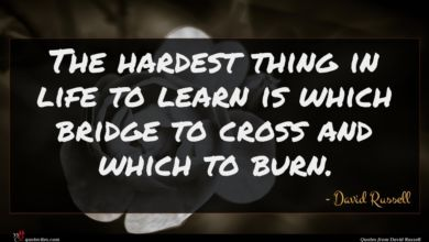 Photo of David Russell quote : The hardest thing in …