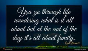 Rod Stewart quote : You go through life ...