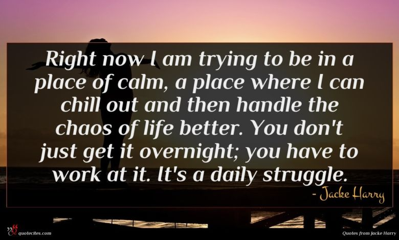 Right now I am trying to be in a place of calm, a place where I can chill out and then handle the chaos of life better. You don't just get it overnight; you have to work at it. It's a daily struggle.