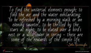 John Burroughs quote : To find the universal ...