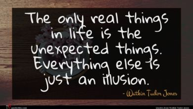 Photo of Watkin Tudor Jones quote : The only real things …