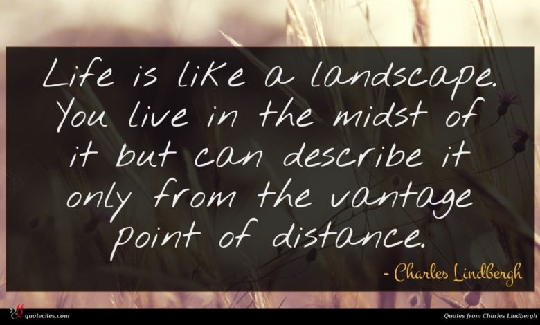 Life is like a landscape. You live in the midst of it but can describe it only from the vantage point of distance.