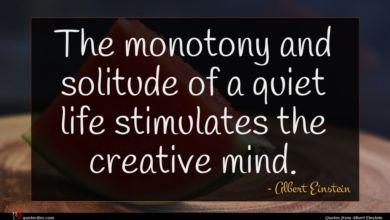 Photo of Albert Einstein quote : The monotony and solitude …