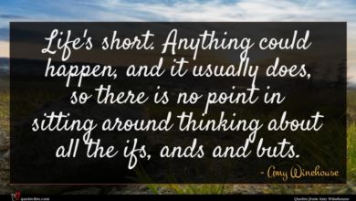 Photo of Amy Winehouse quote : Life's short Anything could …
