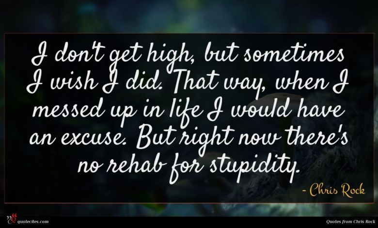 I don't get high, but sometimes I wish I did. That way, when I messed up in life I would have an excuse. But right now there's no rehab for stupidity.