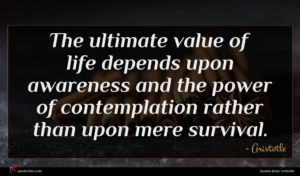 Aristotle quote : The ultimate value of ...