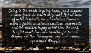 John Muir quote : Going to the woods ...