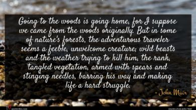 Photo of John Muir quote : Going to the woods …