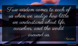 Socrates quote : True wisdom comes to ...
