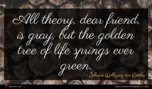 Johann Wolfgang von Goethe quote : All theory dear friend ...