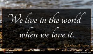 Rabindranath Tagore quote : We live in the ...