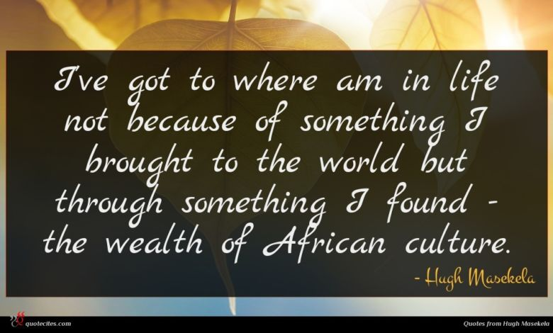 I've got to where am in life not because of something I brought to the world but through something I found - the wealth of African culture.