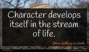 Johann Wolfgang von Goethe quote : Character develops itself in ...