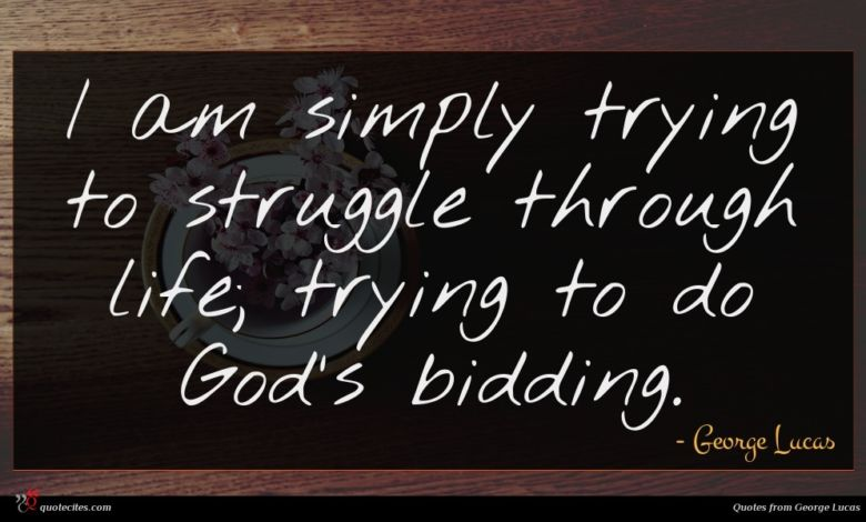 I am simply trying to struggle through life; trying to do God's bidding.