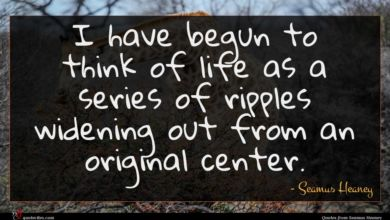Photo of Seamus Heaney quote : I have begun to …