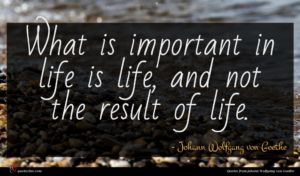 Johann Wolfgang von Goethe quote : What is important in ...