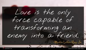 Martin Luther King, Jr. quote : Love is the only ...