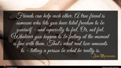 Photo of Jim Morrison quote : Friends can help each …