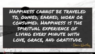 Photo of Denis Waitley quote : Happiness cannot be traveled …