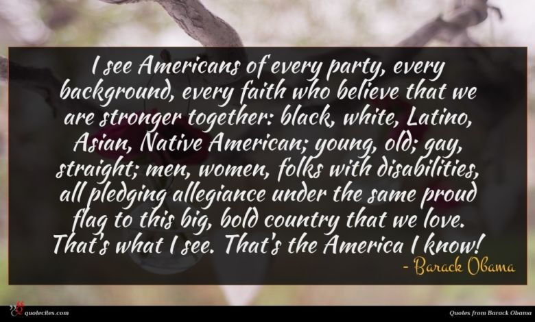 I see Americans of every party, every background, every faith who believe that we are stronger together: black, white, Latino, Asian, Native American; young, old; gay, straight; men, women, folks with disabilities, all pledging allegiance under the same proud flag to this big, bold country that we love. That's what I see. That's the America I know!