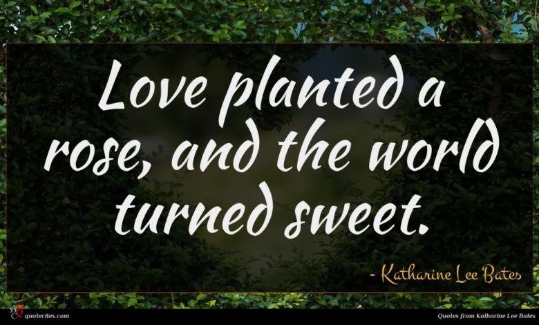 Love planted a rose, and the world turned sweet.
