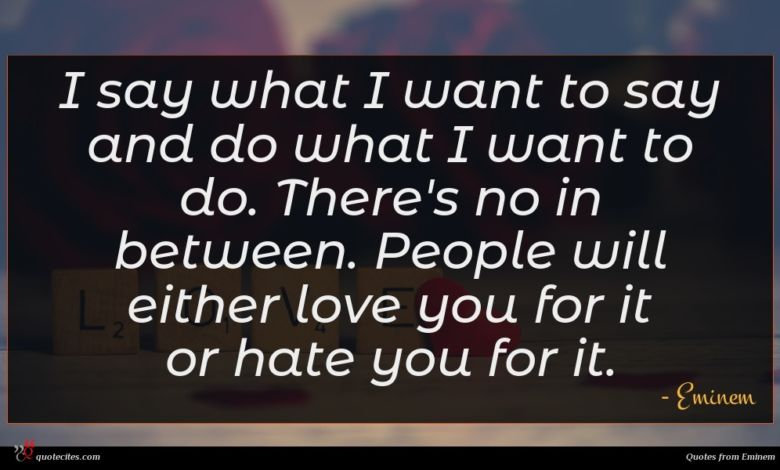I say what I want to say and do what I want to do. There's no in between. People will either love you for it or hate you for it.