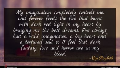 Photo of Kim Elizabeth quote : My imagination completely controls …