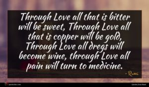 Rumi quote : Through Love all that ...