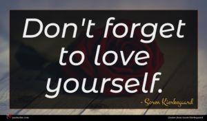 Soren Kierkegaard quote : Don't forget to love ...