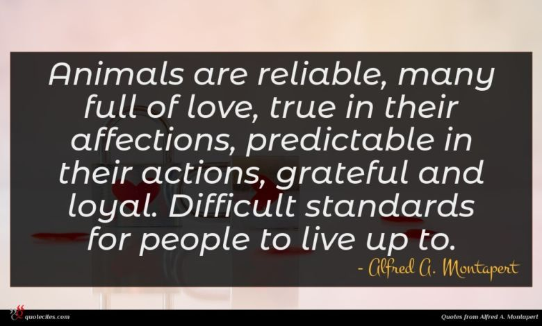 Animals are reliable, many full of love, true in their affections, predictable in their actions, grateful and loyal. Difficult standards for people to live up to.