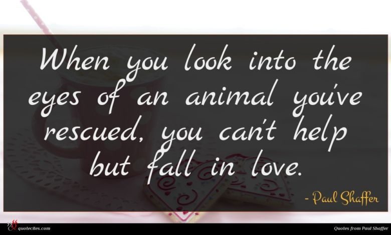 When you look into the eyes of an animal you've rescued, you can't help but fall in love.