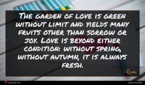 Rumi quote : The garden of love ...
