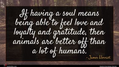 Photo of James Herriot quote : If having a soul …