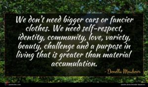 Donella Meadows quote : We don't need bigger ...