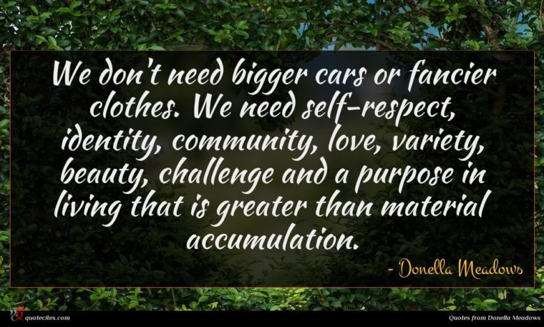 We don't need bigger cars or fancier clothes. We need self-respect, identity, community, love, variety, beauty, challenge and a purpose in living that is greater than material accumulation.