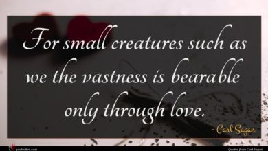 Photo of Carl Sagan quote : For small creatures such …