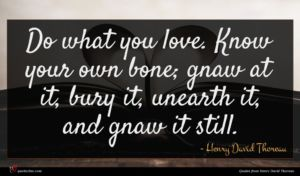 Henry David Thoreau quote : Do what you love ...