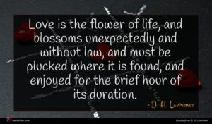 D. H. Lawrence quote : Love is the flower ...