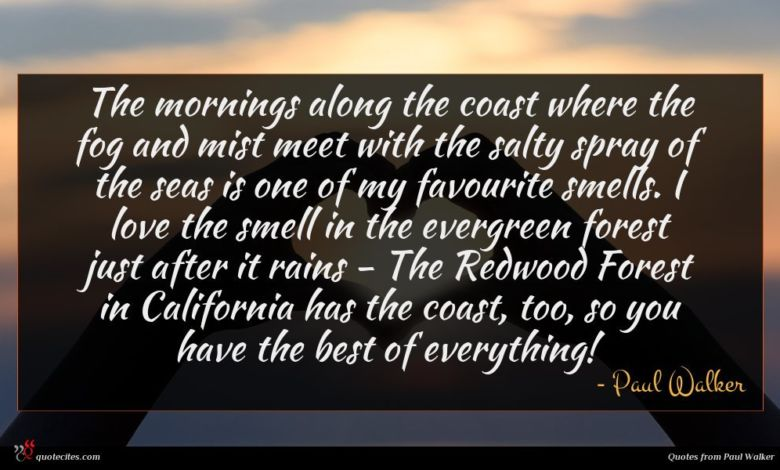 The mornings along the coast where the fog and mist meet with the salty spray of the seas is one of my favourite smells. I love the smell in the evergreen forest just after it rains - The Redwood Forest in California has the coast, too, so you have the best of everything!